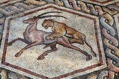 mozaika rzymska fotografia royalty free