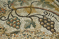 Mozaika winogrono Zdjęcia Stock