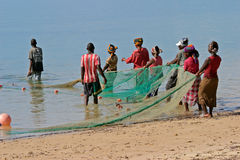 Mozambican fishermen, Mozambique, southern Africa. Mozambican fishermen and women pulling a fishing net from the water, Mozambique, southern Africa Stock Photography