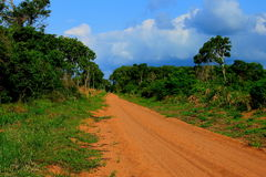 Mozambique Africa. A dirt road through the coutadas in Mozambique Stock Photos