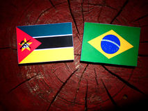 Mozambique flag with Brazilian flag on a tree stump isolated. Mozambique flag with Brazilian flag on a tree stump Stock Image