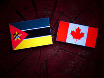 Mozambique flag with Canadian flag on a tree stump isolated. Mozambique flag with Canadian flag on a tree stump Royalty Free Stock Images