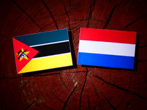 Mozambique flag with Dutch flag on a tree stump isolated. Mozambique flag with Dutch flag on a tree stump Royalty Free Stock Photography