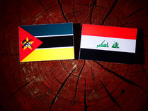 Mozambique flag with Iraqi flag on a tree stump isolated. Mozambique flag with Iraqi flag on a tree stump Stock Photo