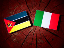 Mozambique flag with Italian flag on a tree stump isolated. Mozambique flag with Italian flag on a tree stump Stock Images