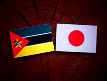 Mozambique flag with Japanese flag on a tree stump isolated. Mozambique flag with Japanese flag on a tree stump Stock Photo