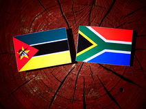 Mozambique flag with South African flag on a tree stump isolated. Mozambique flag with South African flag on a tree stump Royalty Free Stock Images