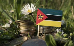Mozambique flag with stack of money coins with grass. And flowers Stock Images