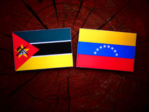 Mozambique. Flag with Venezuelan flag on a tree stump isolated Stock Photo