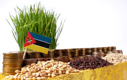 Mozambique flag waving with stack of money coins and piles of wheat Stock Image