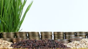 Mozambique flag waving with stack of money coins and piles of wheat. And rice seeds stock video
