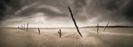 Mozambique Sticks. Sticks put in place by fishermen remain after the tide has retreated Royalty Free Stock Photography