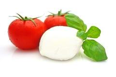 Mozarela del tomate Fotografía de archivo libre de regalías