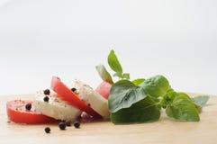 Mozarela y tomate con orégano Imagen de archivo