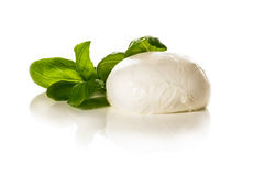 Mozarella Royalty Free Stock Images