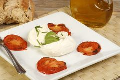 Mozarella cheese. With grilled tomato, basil and olive oil Stock Photography