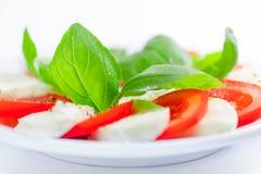 Mozarella en tomatensalade met basilicum Stock Foto's