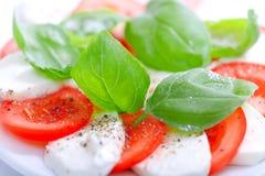 Mozarella en tomatensalade met verse, groene basilicumbladeren - app Royalty-vrije Stock Foto's