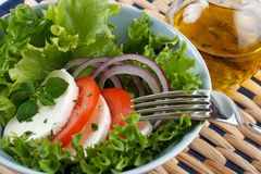 Mozarella salad Stock Photos