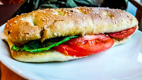 Mozarella Sandwich with tomatoes and greens Royalty Free Stock Photography