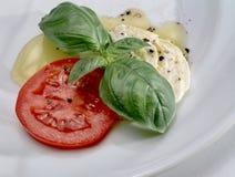 Mozarella, tomaat en basilicum op witte plaat Royalty-vrije Stock Foto's