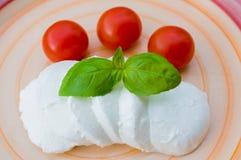 Mozarella, tomaten en basilicum stock fotografie