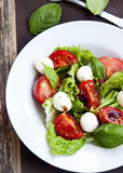Mozarella and Tomato Salad with Basil and Lettuce Stock Photography