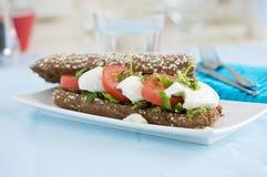 Mozarella tomato sandwich Stock Images