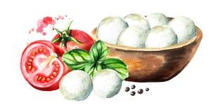 Mozarellakaas in de kom, Basilicum, tomaten Waterverfhand getrokken die illustratie, op witte achtergrond wordt geïsoleerd Royalty-vrije Stock Foto