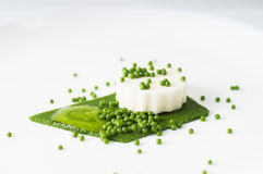 Mozarellapudding, spinaziekaviaar, spinaziesaus en groene pape Stock Foto