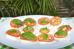 Mozerella cheese. Arranged with tomatoes and basil on a white plate in front of palm leaves stock photos