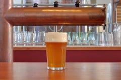 Mozo de taberna de la taza de cerveza Fotografía de archivo libre de regalías