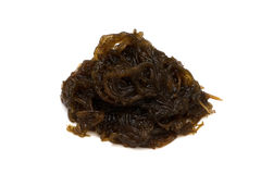 MOZUKU seaweed Royalty Free Stock Photography