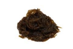 MOZUKU seaweed Royalty Free Stock Photography