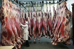 MOZYR, ΛΕΥΚΟΡΩΣΊΑ - 22 Σεπτεμβρίου 2011: Το εργοστάσιο επεξεργασίας κρέατος Επεξεργασία του χοιρινού κρέατος και του βόειου κρέατ στοκ εικόνα με δικαίωμα ελεύθερης χρήσης