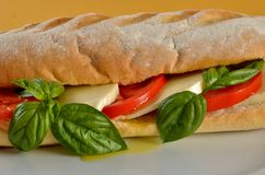 Mozzarela sandwich Stock Photography