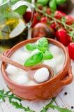 mozzarella сыра Стоковые Фото