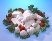 Mozzarella Fotografia de Stock