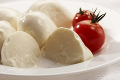 Mozzarella. Soft cheese - mozzarella with tomato on the plate for lunch Royalty Free Stock Image