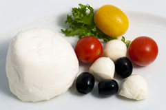 Mozzarella Stock Images