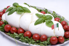 Mozzarella. Italian taste,  tray with mozzarella, tomatoes, basil Stock Photos
