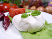 Mozzarella. Cheese Royalty Free Stock Photos