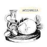Mozzarella Royaltyfri Fotografi