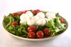 Mozzarella. Some mozzarella, salad and tomatoes on a plate royalty free stock images