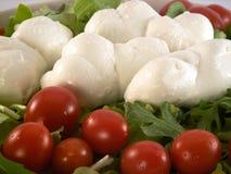 Mozzarella. Some mozzarella, salad and tomatoes on a plate royalty free stock photo