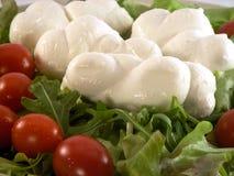 Mozzarella. Some mozzarella, salad and tomatoes on a plate Stock Photography