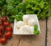 Mozzarella Immagini Stock