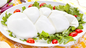 Mozzarella auf einem grünen Salat Stockbild