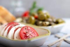 Mozzarella avec des tomates et des olives image libre de droits