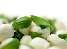 Mozzarella Balls & Basil Leaves. Studio macro of fresh mozzarella cheese balls with basil. Shallow DOF with copy space against a white background Stock Images